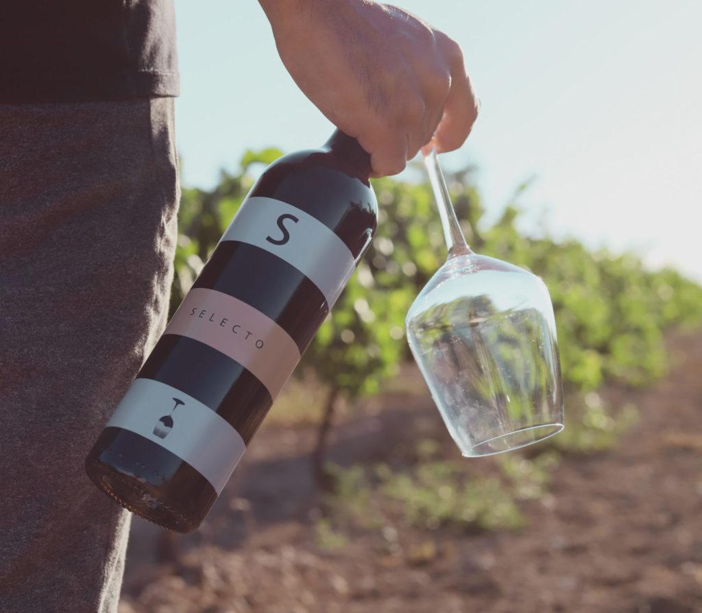 Decanter concurso vinos Carchelo